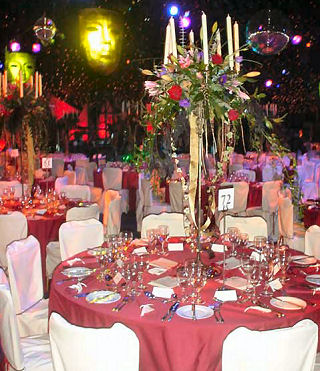 Themed Event which was organised by amazing Parties