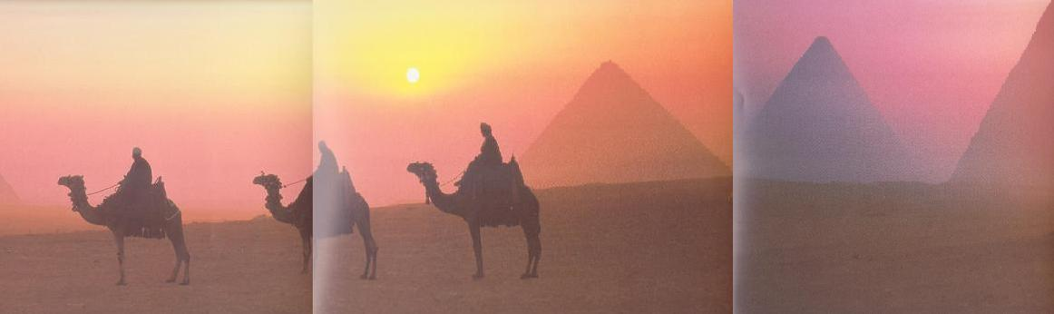 Pyramids and camels