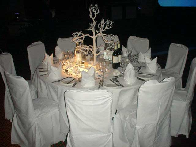 winter wonderland themed table & Winter Wonderland themed parties and theme events